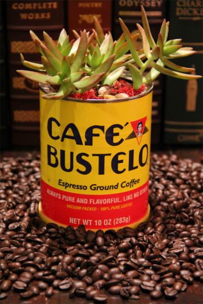 healthy alternative to coffee