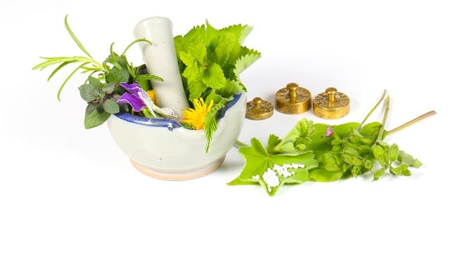 traditional german herbal medicine meds
