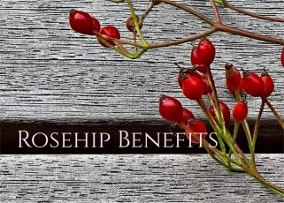 Rose Hip Benefits and Remedies