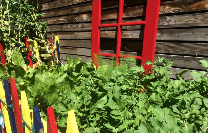 gardening crafts