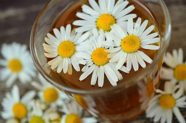 Gastritis Natural Remedies 5