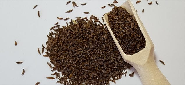What is caraway