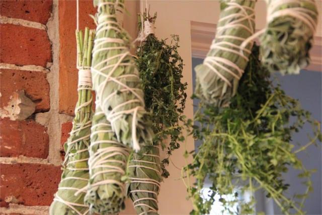 preserve fresh herbs 3