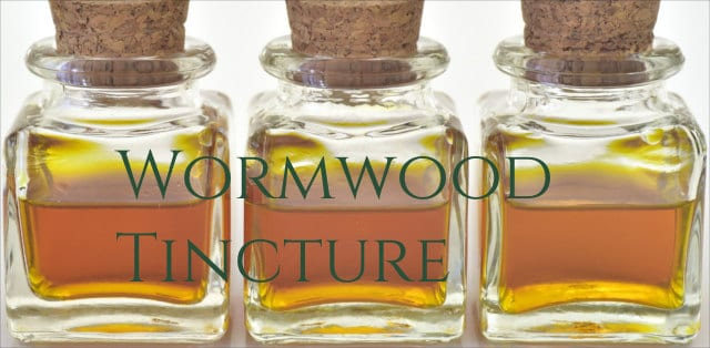 Wormwood Benefits 5