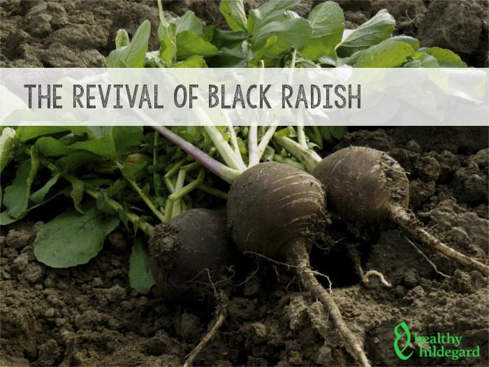 black radish soup