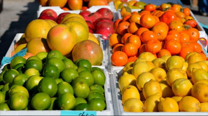 Citrus fruits bitter foods