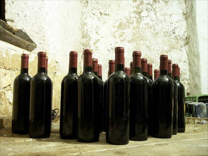 Red Wine bitter foods