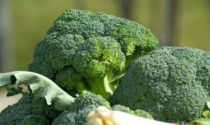 Broccoli bitter foods