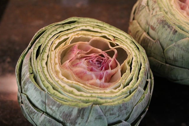 20 things about hildegard von bingen bitter foods artichoke