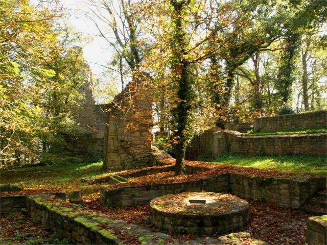 Music of Hildegard of Bingen ruins of disibodenberg