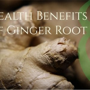 Ginger Root Health Benefits
