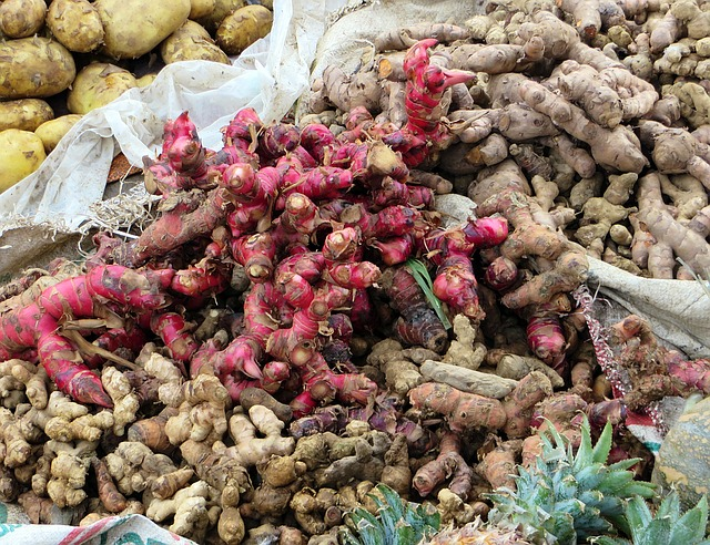 health benefits of ginger root chinese medicine