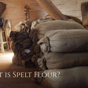What is Spelt Flour? An Alternative to Wheat Flour