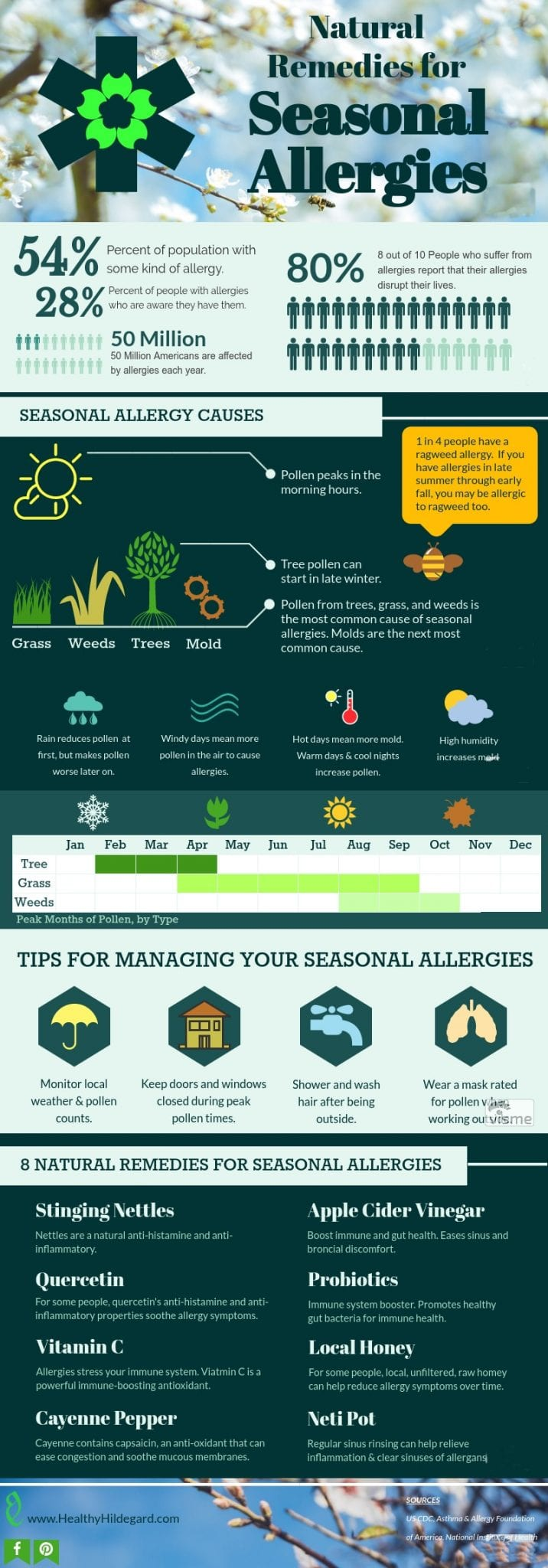 Seasonal Allergies Infographic