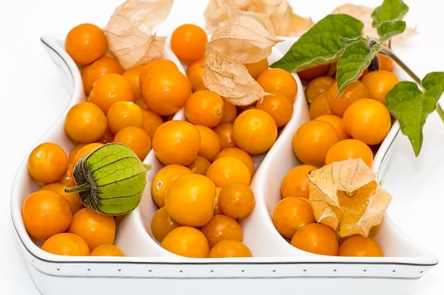 cape gooseberry benefits