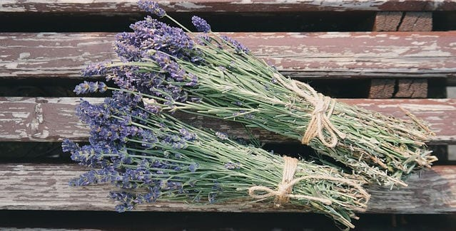 Natural Remedies for stress and anxiety lavender essential oil