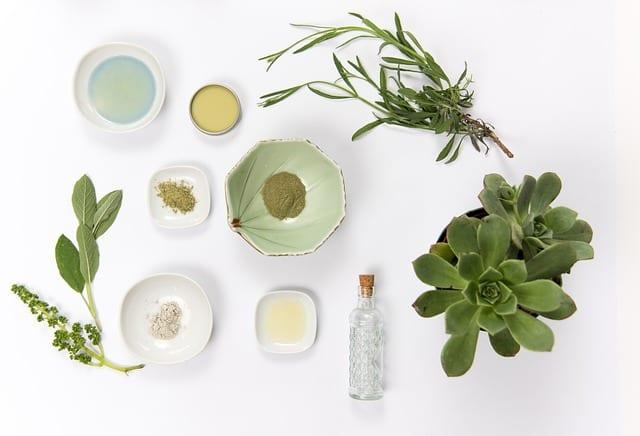 Bitter Herbs Skin Care