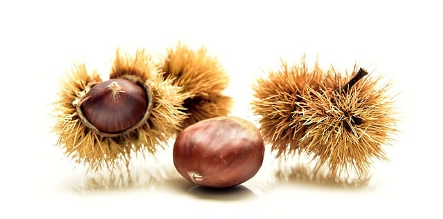 How to Cook Sweet Chestnuts