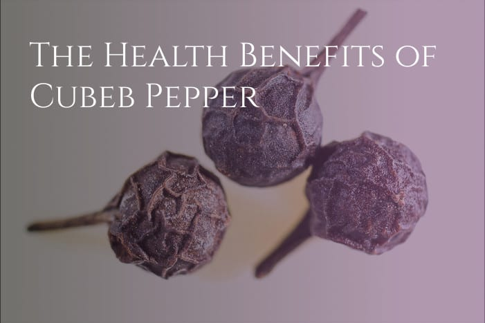 Cubeb Berries Health Benefits
