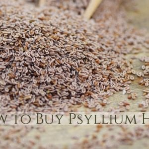 How to Buy Psyllium Seed and Psyllium Husk