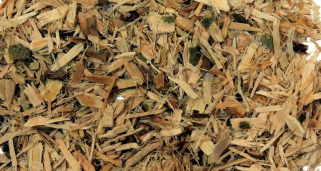 Willow tree bark with fewer side effects in contrast to aspirin