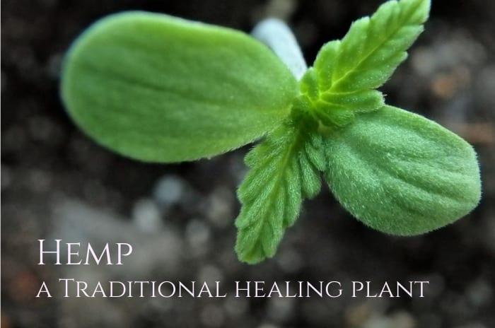 hemp seeds benefits 1