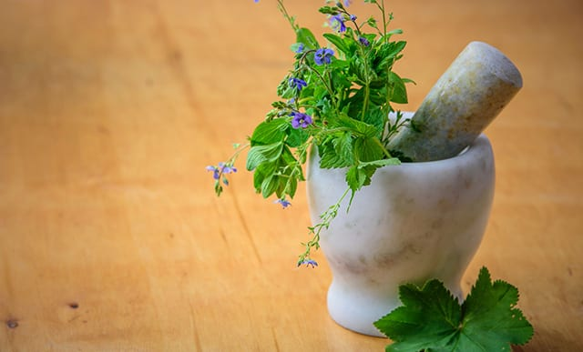 purple petaled flowers in a mortar and pestle