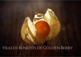 Golden Berry health benefits