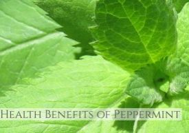benefits peppermint 1