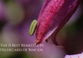 best remedies hildegard of bingen