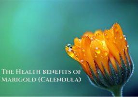 marigold calendula flower uses